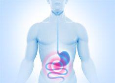 болезни пищеварительной системы