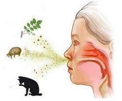 Аллергическая реакция в горле в виде прыщей