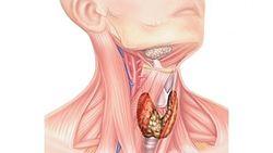 Клиническая картина кома в горле
